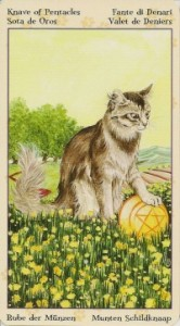 Паж Масть Пентаклей Таро Языческих Кошек (Tarot of Pagan Cats)