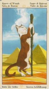 Паж Масть Жезлов Таро Языческих Кошек (Tarot of Pagan Cats)