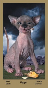 "Паж Масть Мечей Таро ""Катавасия"" (Tarot Cat-A-Vasya)"