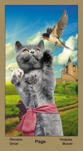 """11 Масть Пентаклей Таро """"Катавасия"""" (Tarot Cat-A-Vasya)"""