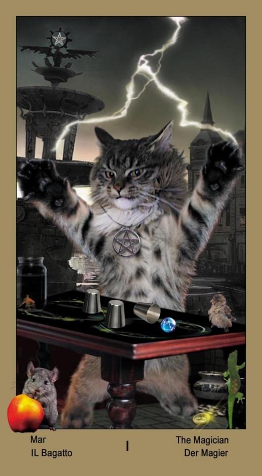 "1 Маг Таро ""Катавасия"" (Tarot Cat-A-Vasya)"