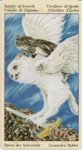 Рыцарь Масть Мечей Таро Языческих Кошек (Tarot of Pagan Cats)