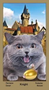 """Рыцарь Масть Пентаклей Таро """"Катавасия"""" (Tarot Cat-A-Vasya)"""