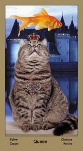 "Королева Масть Кубков Таро ""Катавасия"" (Tarot Cat-A-Vasya)"
