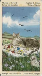 Королева Масть Мечей Таро Языческих Кошек (Tarot of Pagan Cats)