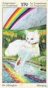 14 Умеренность Таро Языческих Кошек (Tarot of Pagan Cats)