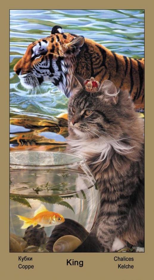 """Король Масть Кубков Таро """"Катавасия"""" (Tarot Cat-A-Vasya)"""