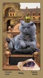 """Король Масть Пентаклей Таро """"Катавасия"""" (Tarot Cat-A-Vasya)"""