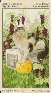 Король Масть Пентаклей Таро Языческих Кошек (Tarot of Pagan Cats)