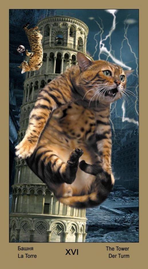"16 Башня Таро ""Катавасия"" (Tarot Cat-A-Vasya)"