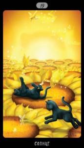 19 Солнце Таро Черных Котов
