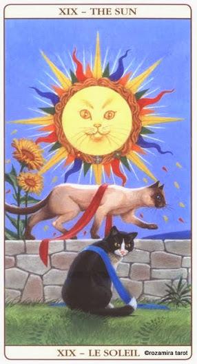 19 Солнце Таро Марсельских кошек (Marseille Cat Tarot)