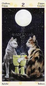 2 Кубков Таро Языческих Кошек (Tarot of Pagan Cats)