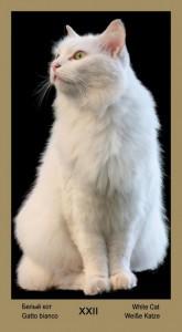 """22 Дополнительная карта Белый Кот Таро """"Катавасия"""" (Tarot Cat-A-Vasya)"""