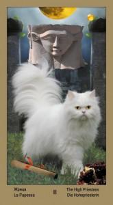 "2 Жрица Таро ""Катавасия"" (Tarot Cat-A-Vasya)"