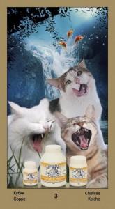 """3 Масть Кубков Таро """"Катавасия"""" (Tarot Cat-A-Vasya)"""