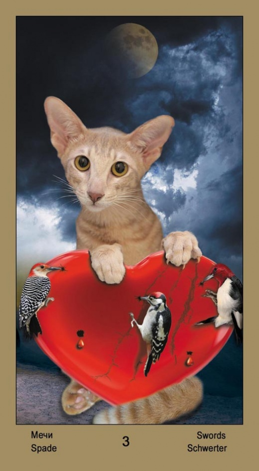 "3 Масть Мечей Таро ""Катавасия"" (Tarot Cat-A-Vasya)"