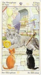 5 Жрец Таро Языческих Кошек (Tarot of Pagan Cats)