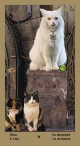 "5 Жрец Таро ""Катавасия"" (Tarot Cat-A-Vasya)"