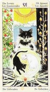 6 Влюбленные Таро Языческих Кошек (Tarot of Pagan Cats)