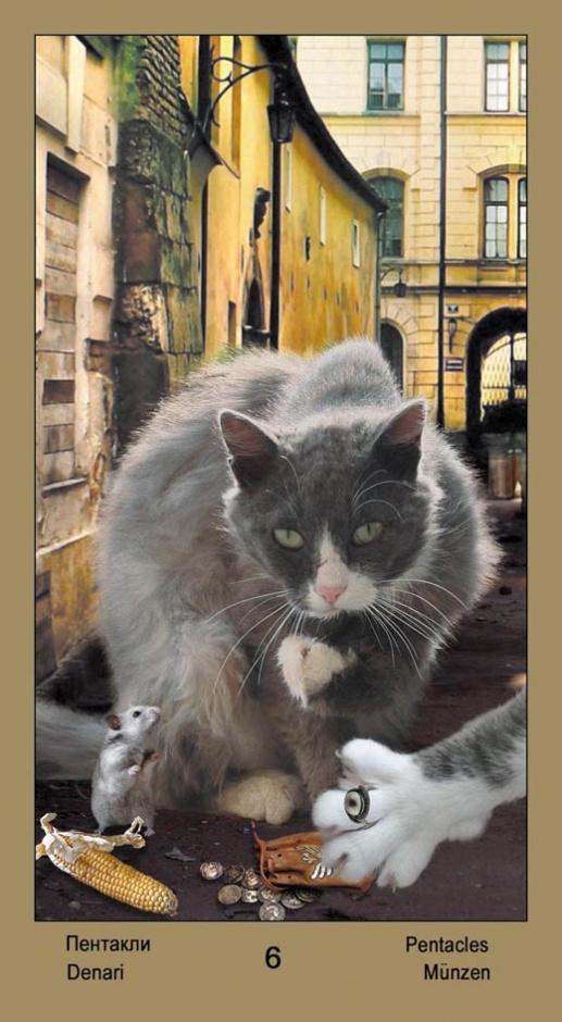 """6 Масть Пентаклей Таро """"Катавасия"""" (Tarot Cat-A-Vasya)"""