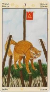7 Масть Жезлов Таро Языческих Кошек (Tarot of Pagan Cats)