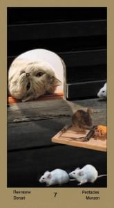 """7 Масть Пентаклей Таро """"Катавасия"""" (Tarot Cat-A-Vasya)"""