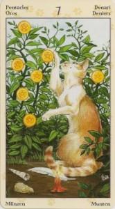 7 Масть Пентаклей Таро Языческих Кошек (Tarot of Pagan Cats)