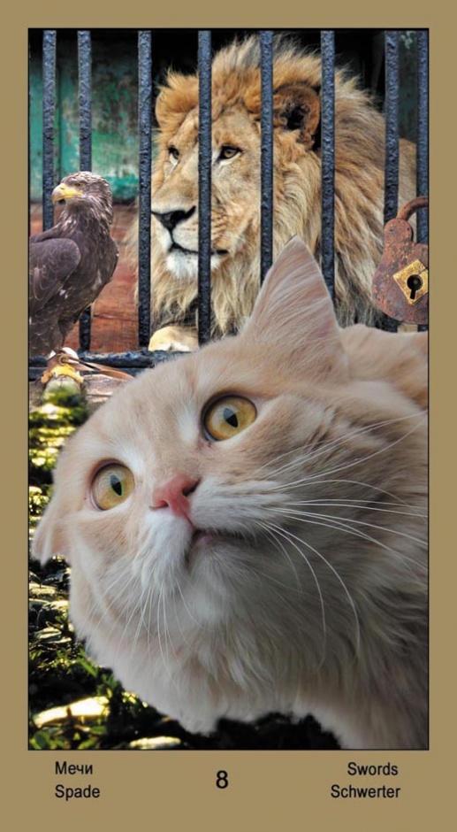 "8 Масть Мечей Таро ""Катавасия"" (Tarot Cat-A-Vasya)"