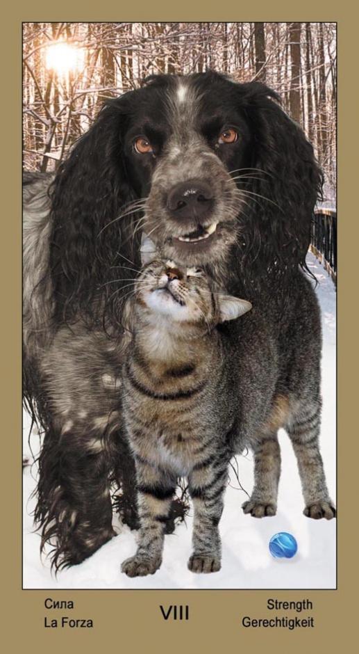 """8 Сила Таро """"Катавасия"""" (Tarot Cat-A-Vasya)"""