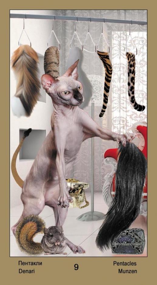 """9 Масть Пентаклей Таро """"Катавасия"""" (Tarot Cat-A-Vasya)"""