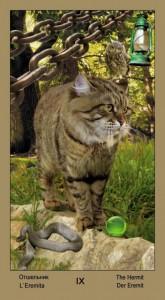 "9 Отшельник Таро ""Катавасия"" (Tarot Cat-A-Vasya)"